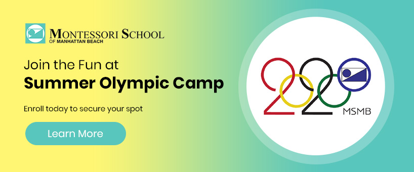 Summer Olympic Camp