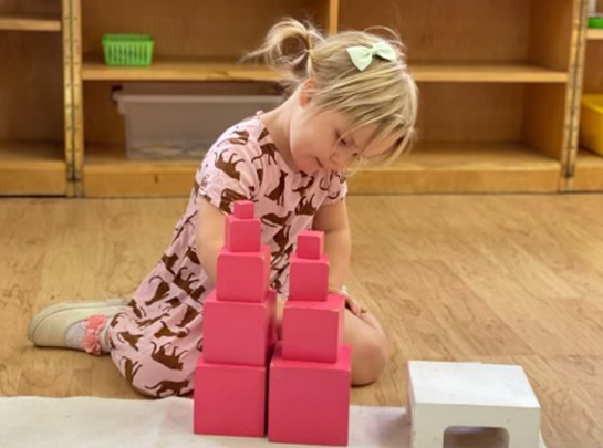 Montessori School of Manhattan Beach